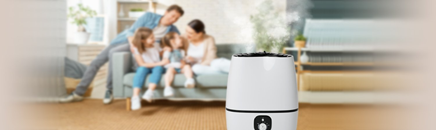 Choose The Best Mist Humidifiers In 2021